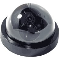 B/W Indoor Dome Camera